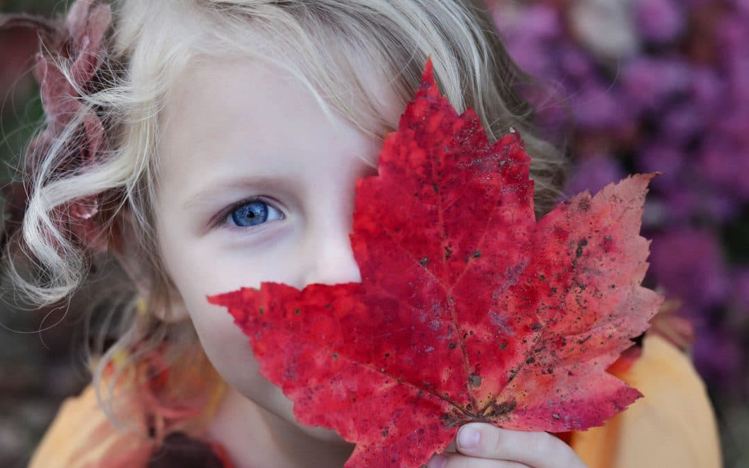 Top 5 Activities for an Awesome Autumn with your Children