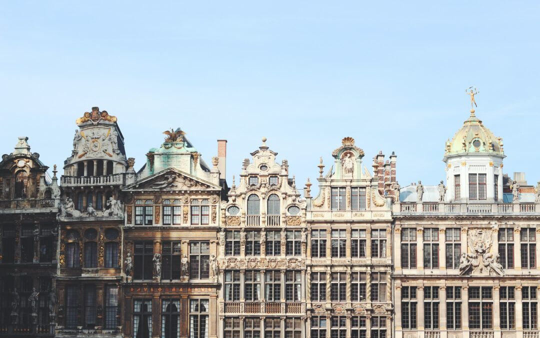 Nanny for G6 & B6m required in Brussels, Belgium – GBN262